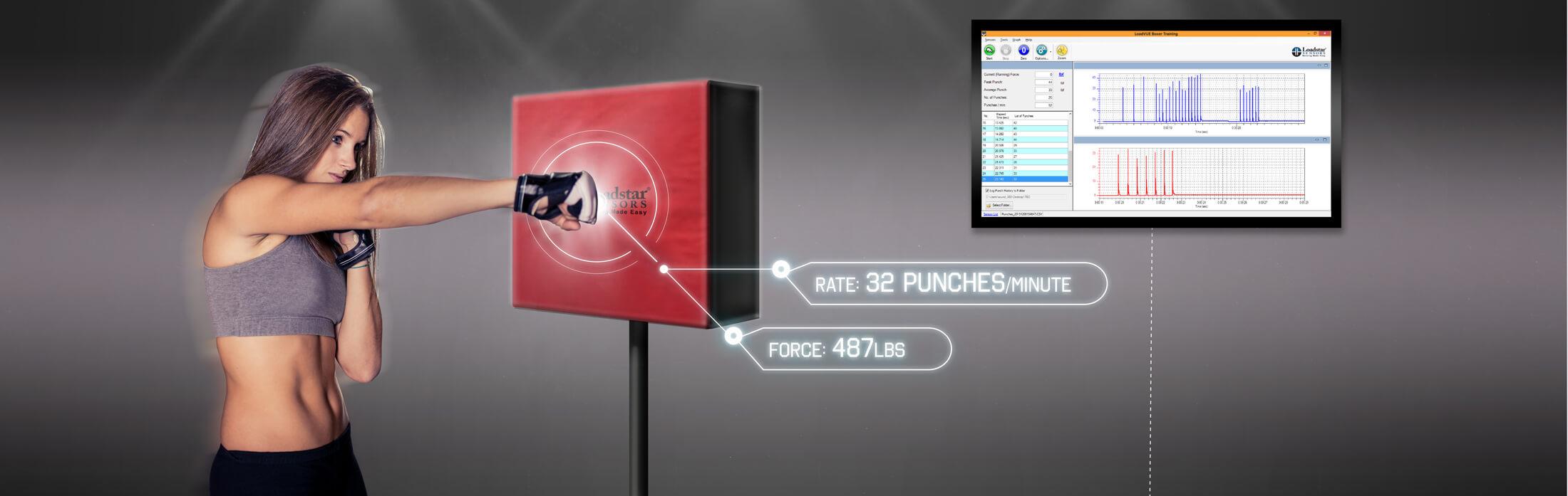 Punch and Kick Force Sensor | Loadstar Sensors
